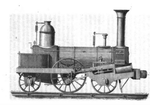 Figuier_locomotive2