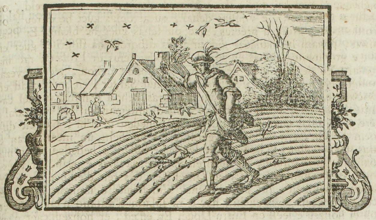 Une Bible illustrée, en haut-vannetais maritime