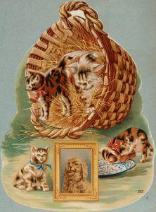 Support de calendrier. Des chatons sortent d'un panier garni de paille. Dans l'encadré, portrait d'un petit chien.